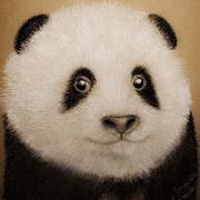 Panda Smile,Mix media,pencil,pastel