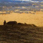 Dawn at Cairn V