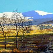 Winter Sunlight, Glen of Imaal