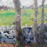 Ash Trees and Old Wall
