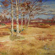 Birch Trees on the Bog