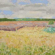 Bogland Colours Oil on canvas