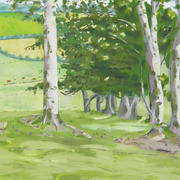 Group of Trees in a Field