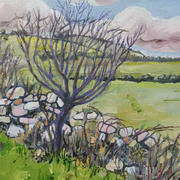 Old Wall and Thorn Trees
