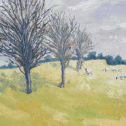 Thorn Trees and Sheep