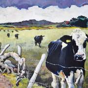 Cows at Dunnalong Road