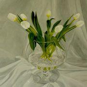 Spring Tulips In Brandy Bowl