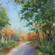 Autumn in Castlecomer Park