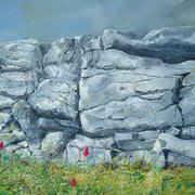 Dry Stone Wall and Pyramidal Orchids Inish Mor Aran Islands