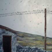 Swallows Scattering Inish Mor Aran Islands