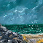terns fishing aran islands