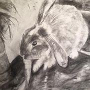 Kathryn's Rabbit