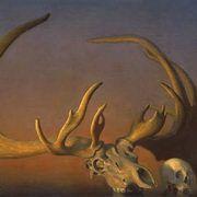 Megaloceros