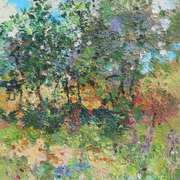 Kerry Garden With Purple and Red Flowers