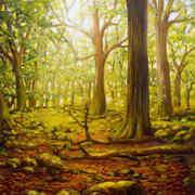 Tomies Woods