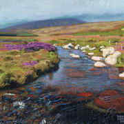 Wicklow Stream