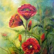 Poppies - Oils - 50 x 80cms
