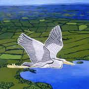 A Grey Heron flies over Lough Sheelin