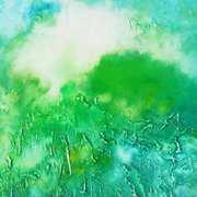 Emerald Garden