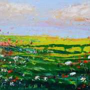 Wildflower Field Rush