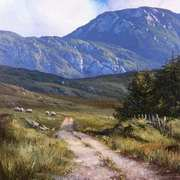 The road to Cregg,Connemara