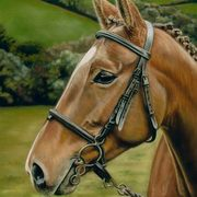 Irish Art, Horse commission,