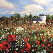 Sea of Poppies (Ballincollig Regional Park)