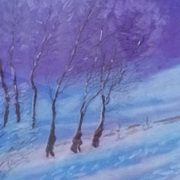 Roscommon in Winter