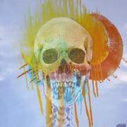 Decay I,Acrylic