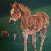 Irish Art, April Foal,