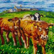 Curious Cattle, Portmuck, Islandmagee, County Antrim