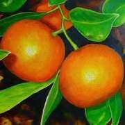Pomello Mandarin