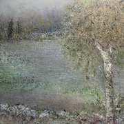 Willow's Pass