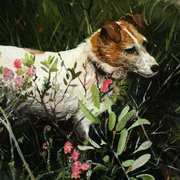 Flora, Fauna Agus Tiny