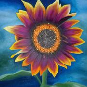 Sunflower In A Wild Garden