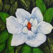 Magnolia,Beeswax