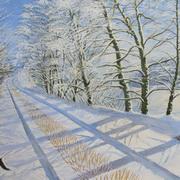 Winter Wondweland