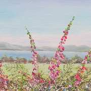 Ballyheigue view Co Kerry