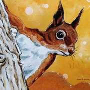 Iora (Red Squirrel)