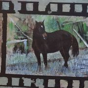Irish Art, Nel The Brown Mare,