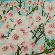 Apple Blossoms,Nature