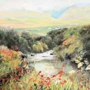 Montbretia by the stream
