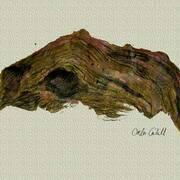 Driftwood,Inks
