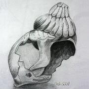 Shell No. 2