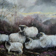 Donegal Sheep in the Mist 30x30 Acrylic on canvas
