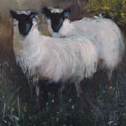Sheep on the Donegal Bog