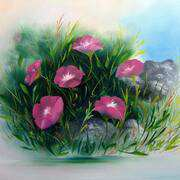 Wild Flowers of The Burren