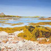 Stone and Kelp Shoreline