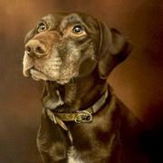 Evey's Portrait