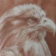 W.T. Eagle